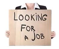 Web developer available for part time