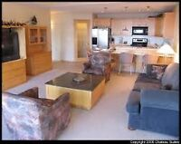 One Bedroom Furnished Condo (1 month free)