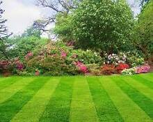ians lawn and garden care Wyee Lake Macquarie Area Preview