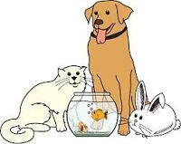 Offering pet-sitting services!