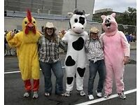 Costume Marketing