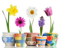 Spring Craft and Gift Show in support of Essential Aid