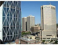 **Fully Furnished**Heart of Downtown**Best location**All Terms**