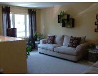 ATTENTION U de M Students – walking distance! 2 to 3 Bedrooms!