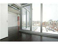 Clean Quiet Gorgeous Open Concept Condo Penthouse in Central One