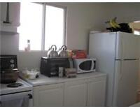 Nice house at 747 Randolph Ave. for rent