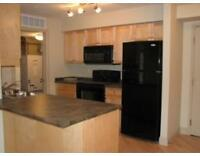 2 bedrooms apartment for rent in Pembina condo