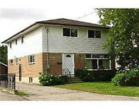 Available Aug. 1st - HUGE house less than 1KM to UOIT