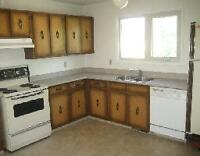 Very close to U of M, 1969 Chancellor Drive, 5 bedrooms House