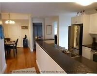 gorgeous lakeview condo for rent/sale