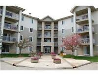 Park Pointe - Furnished 2 Bed - Available October 16th