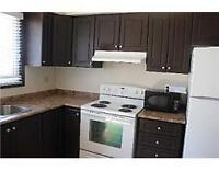 Student Rental Directly across from Niagara College Welland