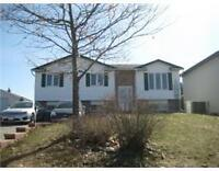 Beautiful South End 4 Bedroom Home - dream kitchen