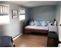 Long Blue room for rent in large 4 bed/3 bath home close to UNB