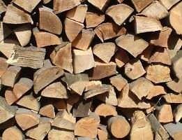 seasoned dry firewood logs