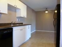 2 bedroom suites with in suites washer dryer - Call 306 713 2694