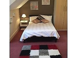 Room in a Shared Flat, Sackville Road, TN39