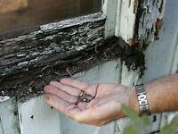 WINDOW AND DOOR REPAIRS + GARDENING