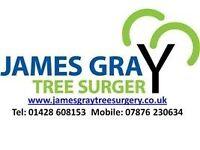 Groundsman / Tree Surgeon - Farnham, Surrey