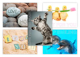 Pack of 50 picture postcards containing mixed cards - ideal for competitions etc