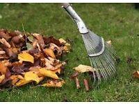groundworks and garden maintanance