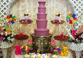 Chocolate fountain for hire Maitland Maitland Area Preview