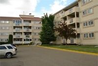 Awesome condo in park meadows/southview area with view