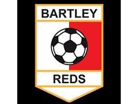 Bartley Reds South Looking for players for the 2017/2018 season.