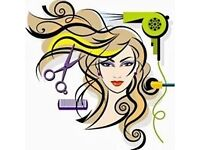 ladies hairdresser or NVQ 3 Qualified to join our small and friendly salon 50% - 50 %