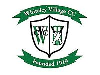 Cricketers wanted aged 12-15 for cricket club in Hersham, KT12