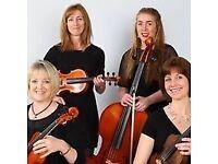 """LooseStrings"" - String Quartet"