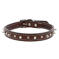 Top Paw Medium Leather Spiked Collar. Only $20!!