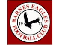 Barnes Eagles Ladies FC - Players wanted!