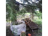 Local Gardening Services, Tree Surgery & Logs