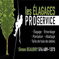 tree services/prunning/removal/stump gringing/edging