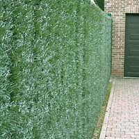 Privacy Screen Fences Walls & Tennis Courts Artificial Fake Grass Chelsea Kingston Area Preview