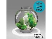 Small/medium bio orb fish tank with about 8 little fish