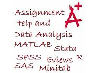 Statistics Maths Assignment Coursework Help- Data Analysis in 24 hours Excel SPSS Stata R SAS Eviews
