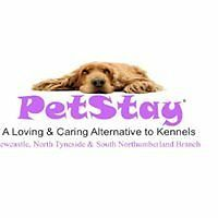 Dog carers needed in the Newcastle, North Tyneside & South Northumberland areas