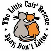 The Little Cats' Rescue, Inc.