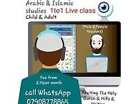 Online course ONE 2 ONE CLASS (Arabic Language and Islamic studies with Quran reciting)
