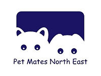 Dog Walker, Dog walking, Doggy Day Care, Pet boarding and Pet care services - North Tyneside