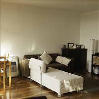 Bronte Apartment - Large Sunny Bedroom Available to Rent Bronte Eastern Suburbs Preview