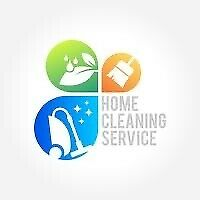 Cleaning services Ironing versatile domestic