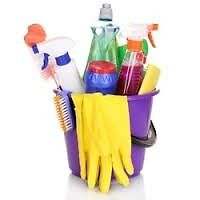Domestic cleaner/ home help covering Watton and a 10 mile radius