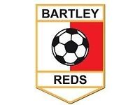 Bartley Reds South Adult Team