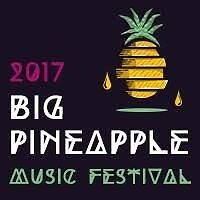 Big Pineapple Camping Ticket x1 Albion Brisbane North East Preview
