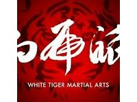 Traditional and Contemporary Martial Arts - South Croydon - Street Self Defence