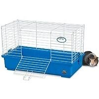 Looking for used cage