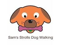 Sam's Strolls Dog Walking, Boarding & Pet Sitting